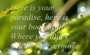 Chris de Burgh - Here Is Your Paradise