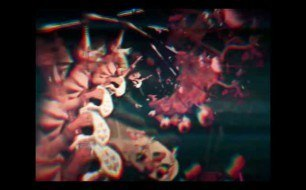 �������� ����������� ���� Tame Impala - Elephant (Official Video)