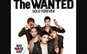 The Wanted - Gold Forever (Steve Smart & WestFunk Radio Edit)