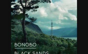 �������� ����������� ���� Bonobo - We Could Forever