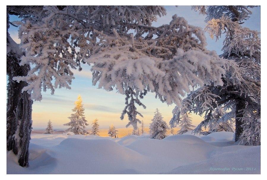 развитии фото о зиме природа со стихами стала итогом многолетних