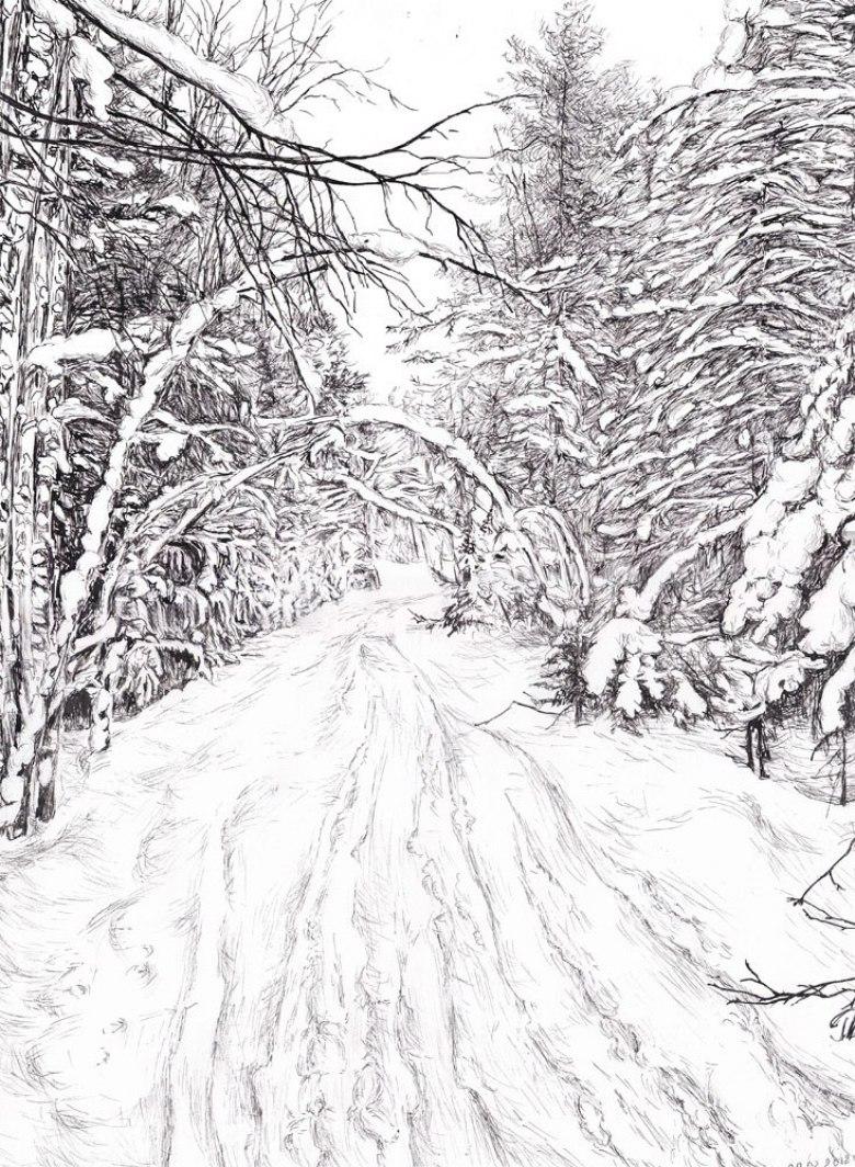 что картинки черный лес карандашом красная