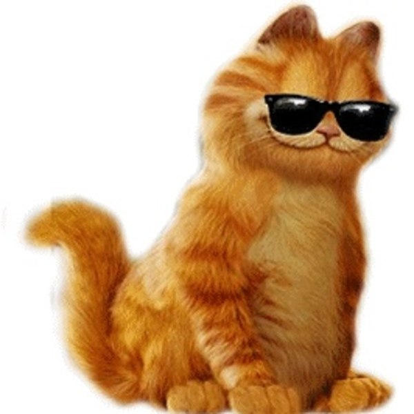 Анимация картинка кот