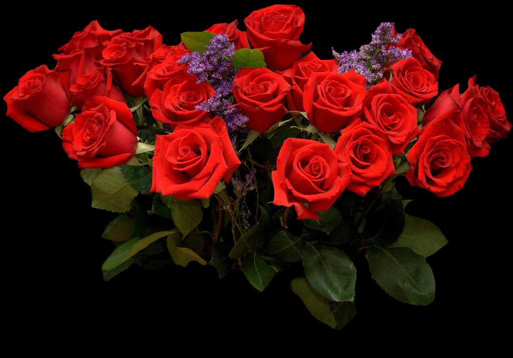 Днем рождения, картинки шикарных роз анимация