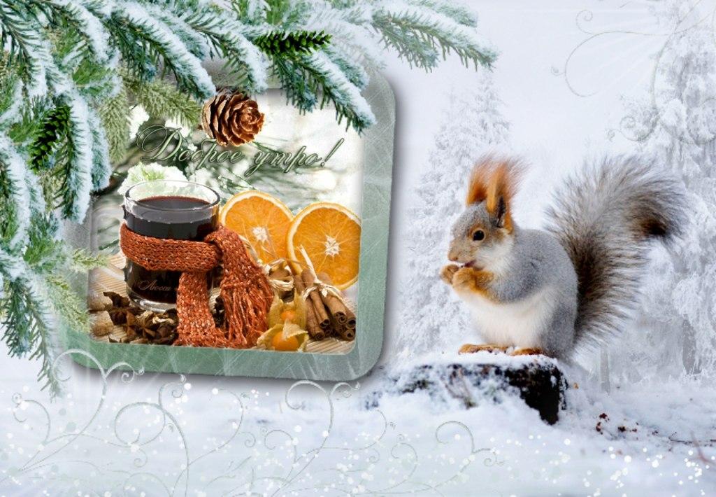 хорошего дня картинки живые зима локи был повелителем