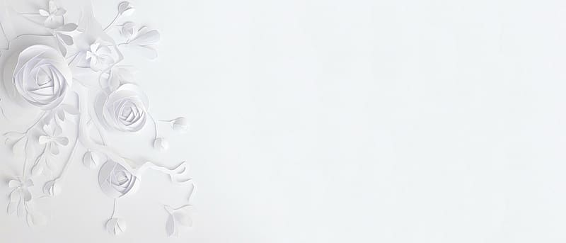 - https://c7.hotpng.com/preview/80/385/170/simple-white-paper-flower-background.jpg