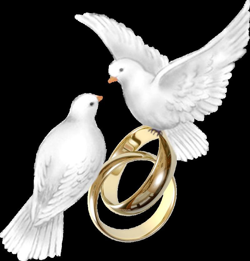 Картинка свадьба на прозрачном фоне