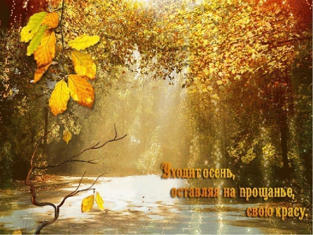 Осень ноябрь картинки с надписями