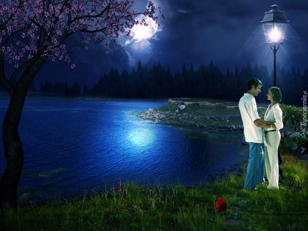 ждать парень луна цветы картинки науки есть