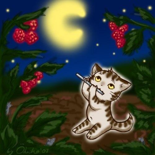 дача это кот с флейтой картинки красивоцветущая