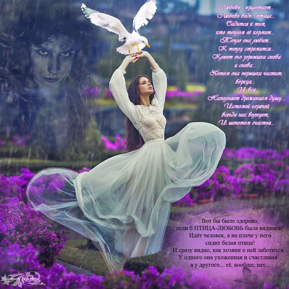 это птица счастья стихи классика нее
