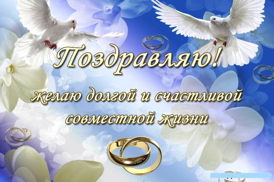 http://www.beesona.ru/upload/490/b72da5c14ace82f12a1e7b9b1895ff4a.jpg