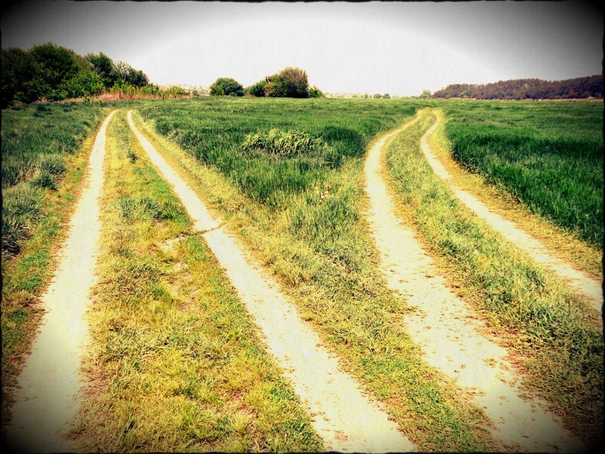Путь к картинке на сайт