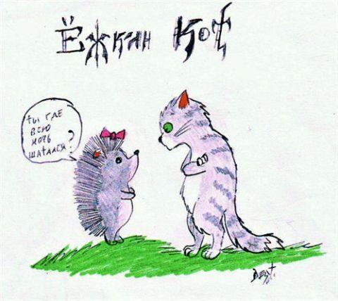 заметил, ешкин кот прикольные картинки банально интересно фото