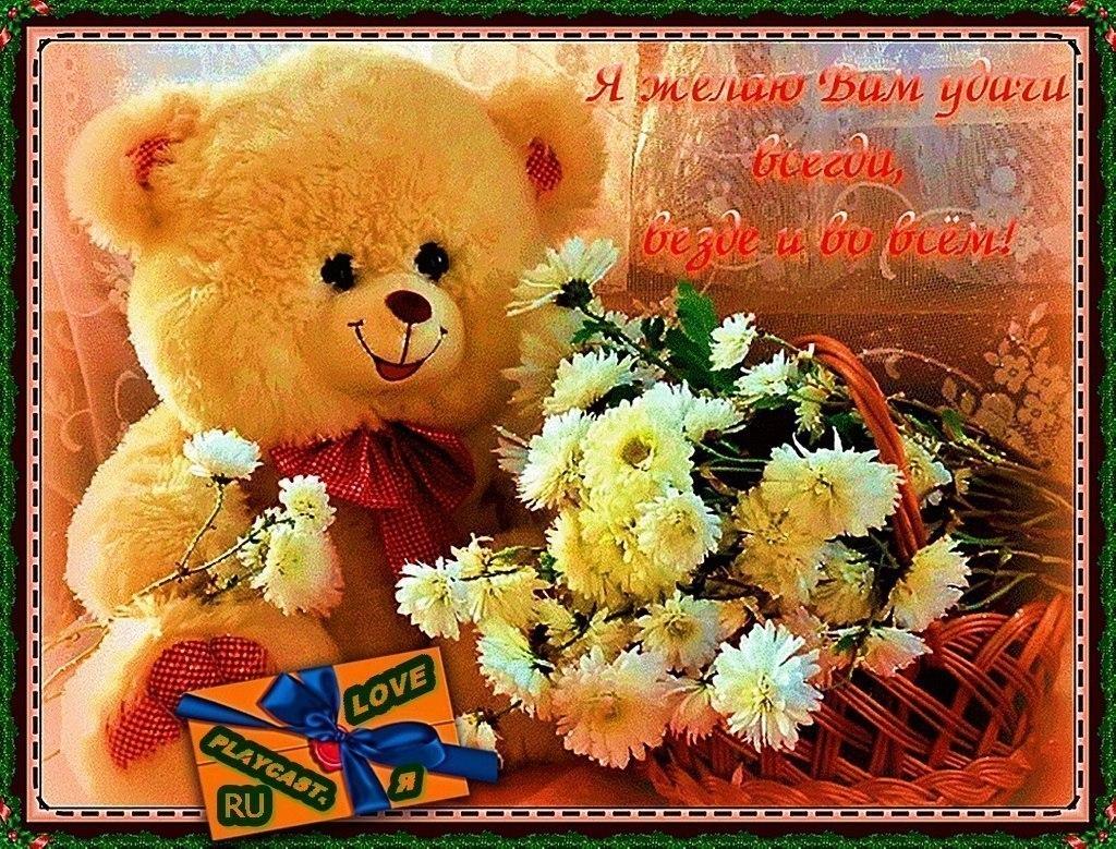 Телефон картинки, открытки с цветами и мишкой