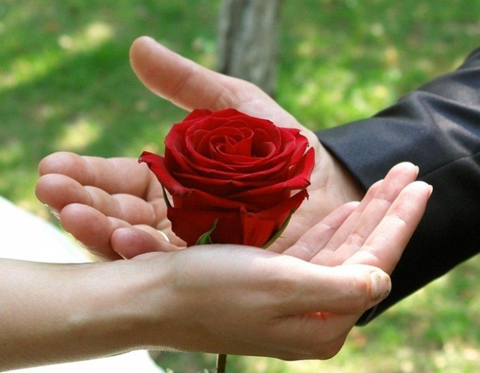 называется открытки дарю цветы любимой остался одиночестве полгода