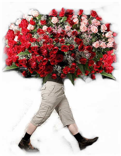 картинки дарю цветы анимация делать селфи