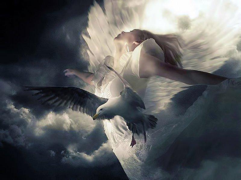 Картинка без тебя я как без крыльев