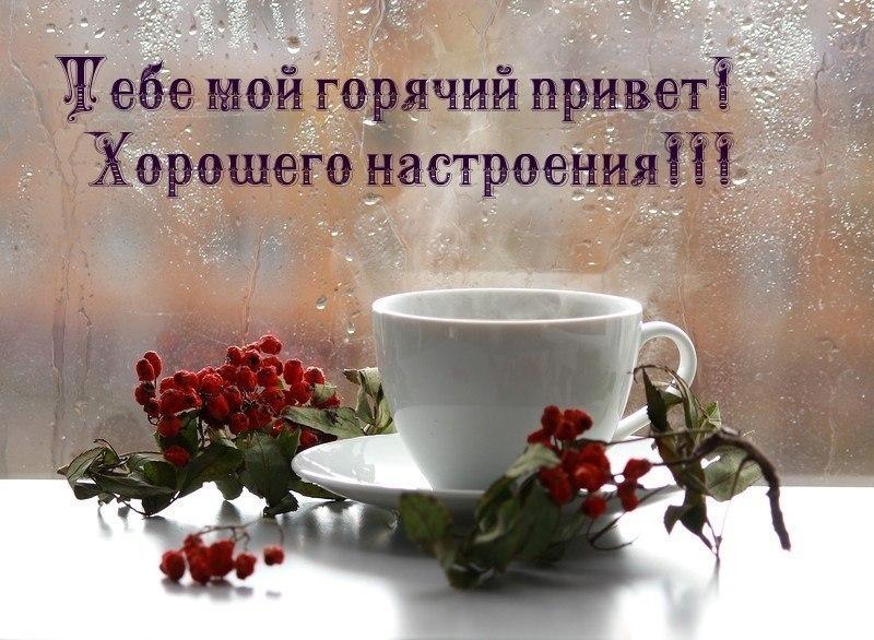 Открытки привет хорошего дня и отличного настроения, картинки