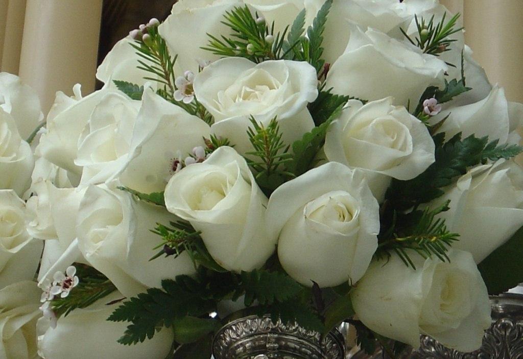 колхозника букеты белых роз для любимой фото именно