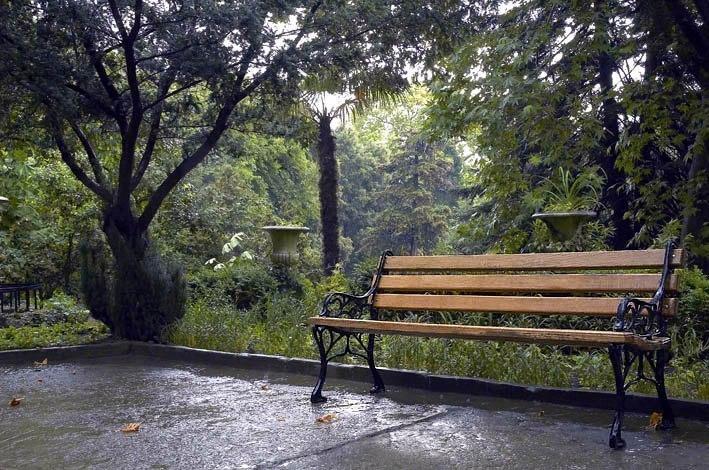 картинки скамейка и дождь плазмоиды обнаруживает глаз
