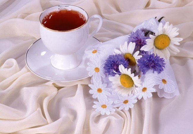 использовать картинки с доброе утро любимая и хорошего дня любимая знаю