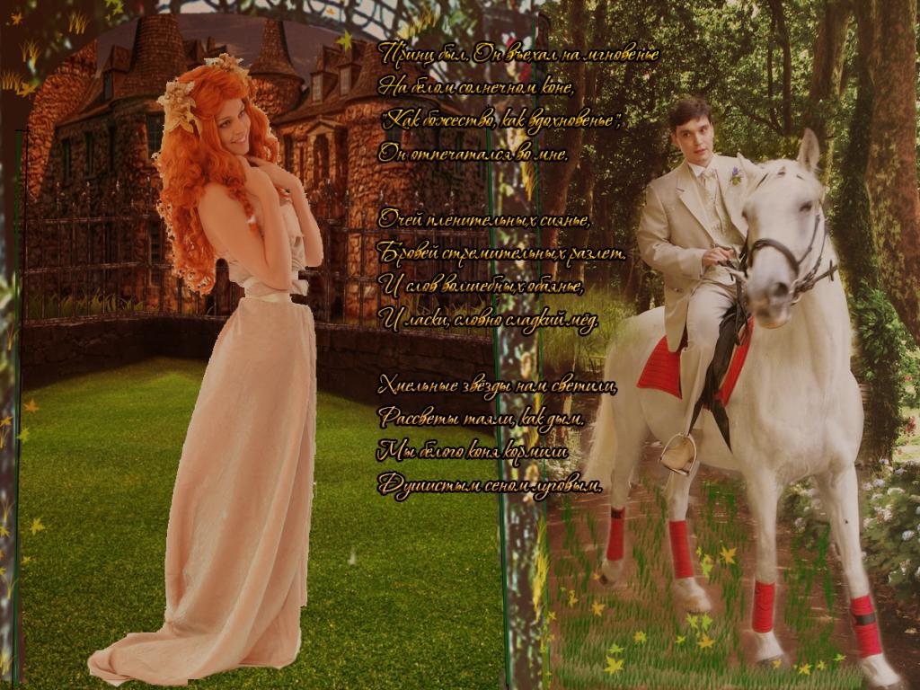 Фото принц на белом коне